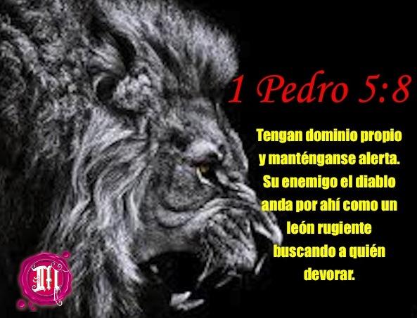 !Cuidado león rugiente en el camino!