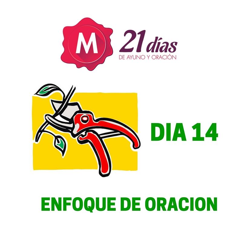 ENFOQUE DE ORACION – AYUNO DE DANIEL – DIA 14
