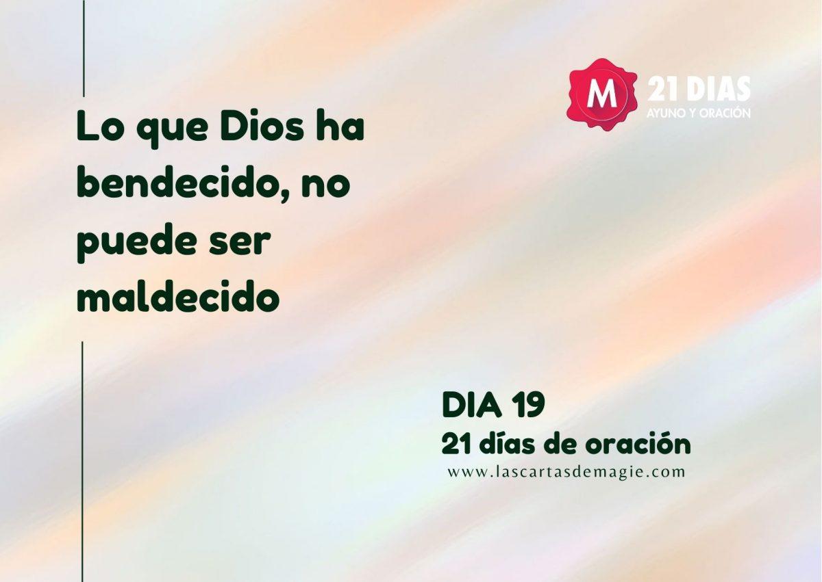 DIA 19
